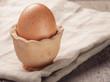 brown egg in handmade holder on rustic table