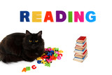 Alphabet and black cat with books on white background.
