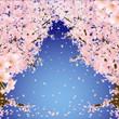 桜のトンネル 青空
