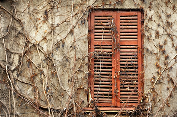 Old wood window with shutters closed
