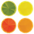 Geometric Fruit Slices