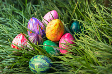 Easter eggs hiding in between the green grass