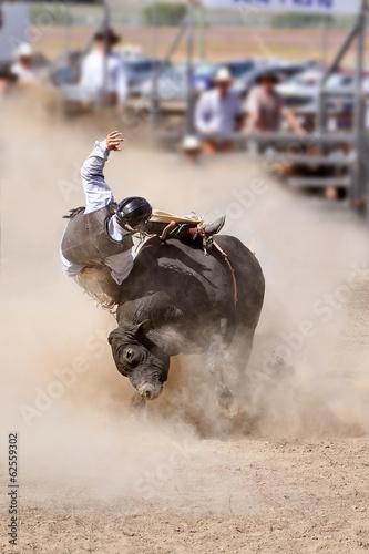 Canvas Nieuw Zeeland Rodeo bull riding