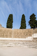 Spruce Trees Over Pompeii Stadium
