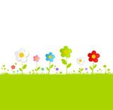 Grüne Bunte Blumenwiese