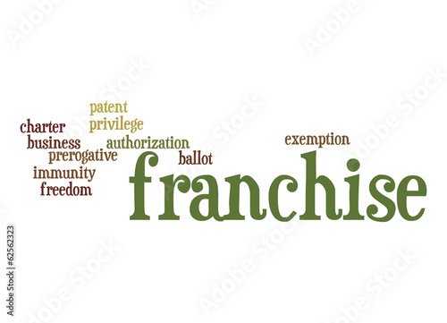 Franchise word cloud