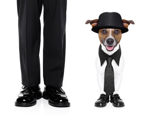 tuxedo dog and owner