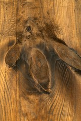Brown wooden background, close up