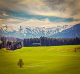 German idyllic pastoral countryside in spring with Alps in backg