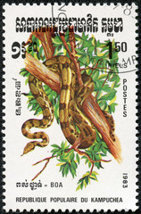 stamp printed by Kampuchea shows Boa Constrictor, Snake