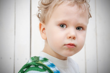 Portrait of cute little boy