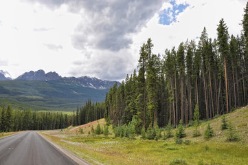 Bow Valley parkway in Canada Rocky Mountains