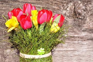Frühlingsblüher mit Holzhintergrund