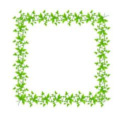natural frame illustration