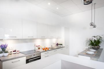 Modern stylish kitchen