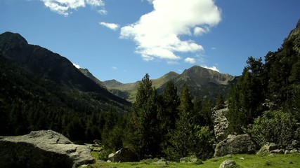 Panoramic view of the high mountains and green forest