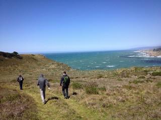Salt Point Hiking