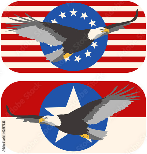 American Bald Eagle Flag Designs