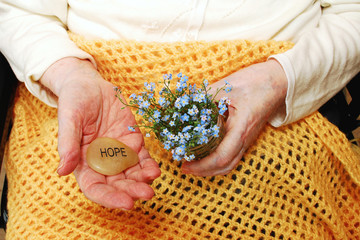 Hope and ForgetMeNot Flowers