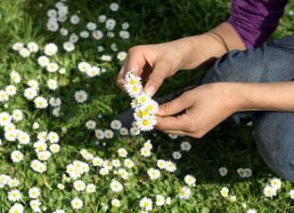 Teenagers Hands with white spring flowers