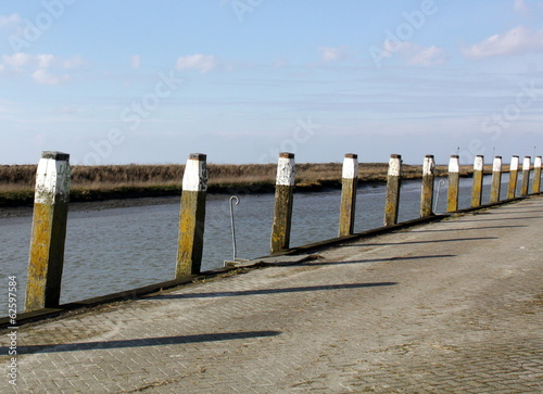 Wooden poles in the harbour of Noordpolderzijl