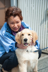高齢者と犬のペット