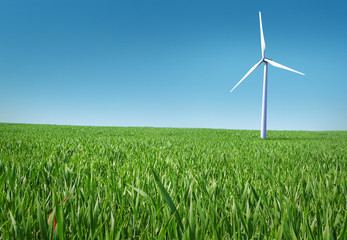 Eco living meadow with wind park
