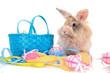 buntes Osternest mit kaninchen und eiern