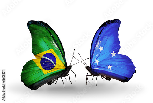 Two butterflies with flags Brazil and Micronesia