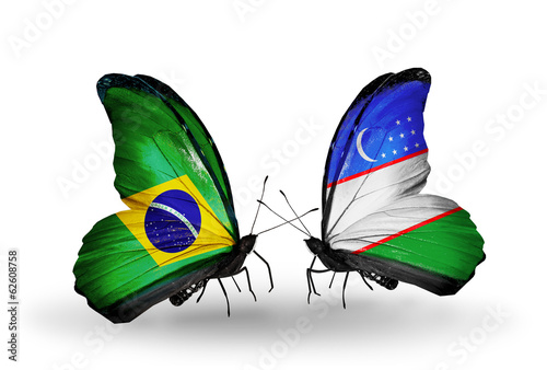 Two butterflies with flags Brazil and Uzbekistan