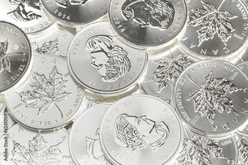 Canadian Silver Maple Leaf Coins