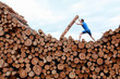 man on top of large pile of logs, pushing heavy log