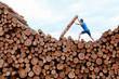 man on top of large pile of logs, pushing heavy log