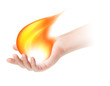 fire in hand on white background
