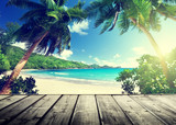 Fototapety seychelles beach and wooden pier