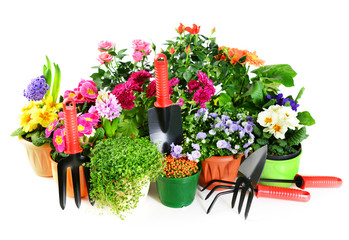 potted flowers and garden tools