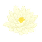 lotus flower in graphic style isolated on white background