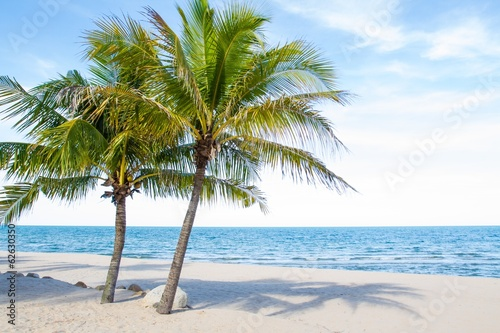Fototapeta Beautiful beach and tropical sea