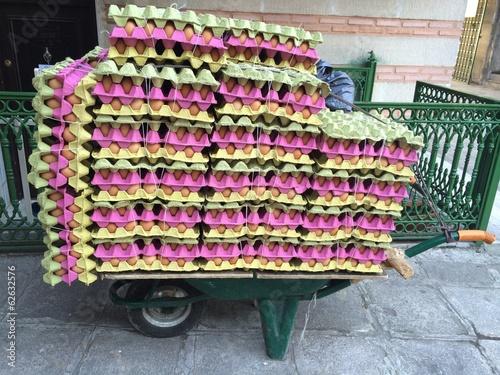 Yumurta Taşıma