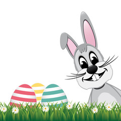 gray bunny side colorful eggs daisy meadow isolated