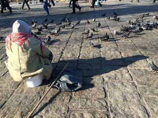 Kuş Yemi Satan Yaşlı Kadın