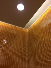 orange toilet wall