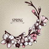 Vectorcard design with hand drawn blooming fruit tree twig
