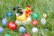 chicks and easter eggs in the grass