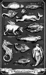 Vintage Set of Mythical Creatures on Blackboard