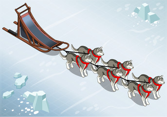 Isometric sled dogs in Front View on Ice