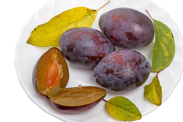 Plum and leaves on a white plate