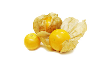 isolated cape gooseberry in white background