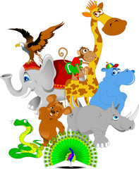 cheerful zoo