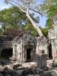 Preah Khan Temple entrace, trees, stones, Angkor, Cambodia